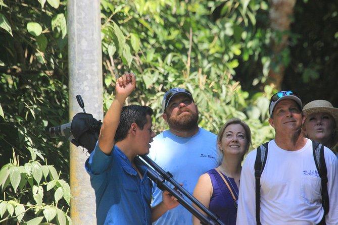 National Park Tour - Manuel Antonio, Quepos, COSTA RICA