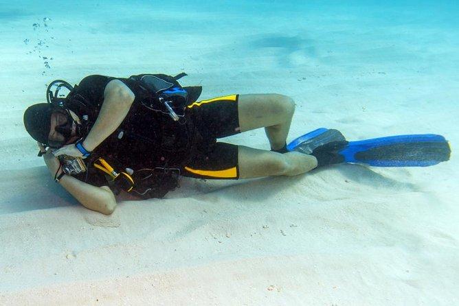 Scuba Diving Boat Trip (Beginners Divers) – Marsa Alam