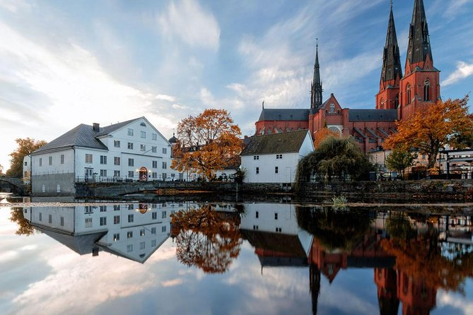 Private Stockholm Tour by VIP car Uppsala and Sigtuna with guide