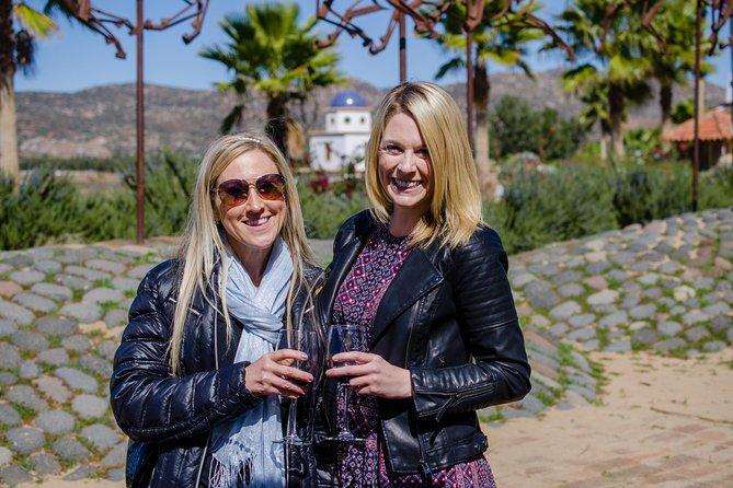 Excursões gastronômicas e a vinícolas no Valle De Guadalupe