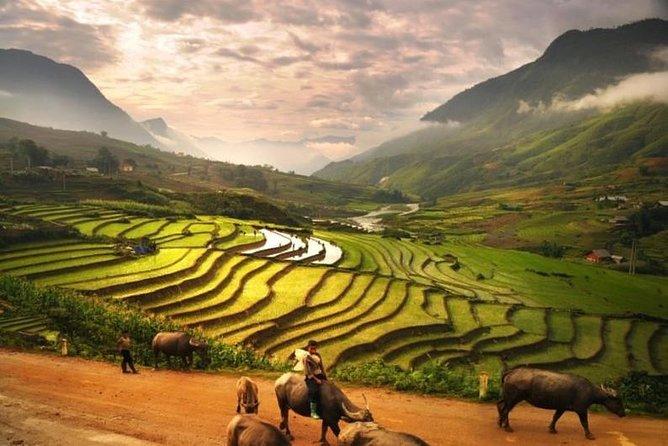 15 Days Majestic Vietnam FULL package - 68% OFF + Bonuses