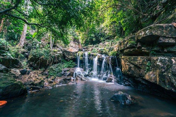 Phong Nha Botanic Garden Walking Tour (4 hour)