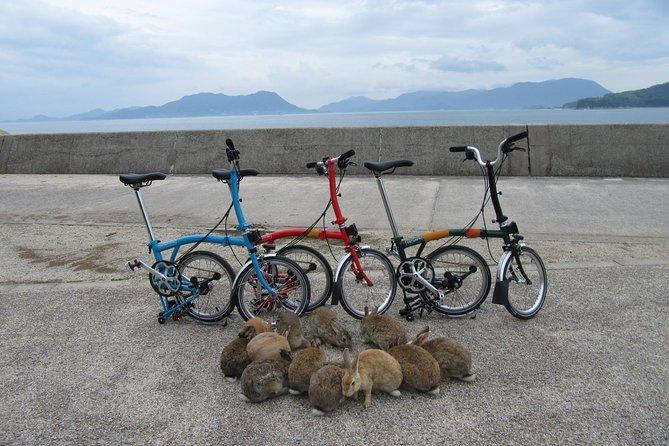 Cycling Tour to the Setouchi Shimanami Kaido, Rabbit Island