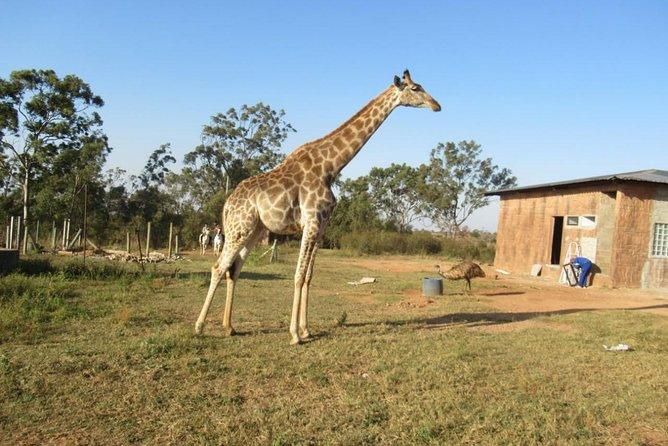 Maputo - Namaacha One Day trip