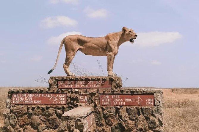 1Day Nairobi National Park,Elephant Center-Giraffes & Karen Blixen Full day tour