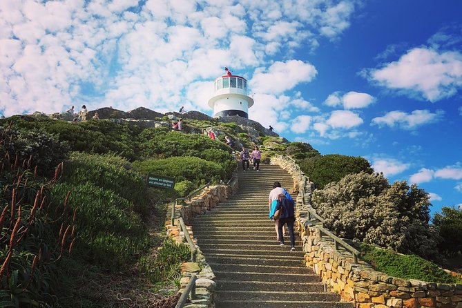 Private Cape Point and Peninsula Tour - Full Day