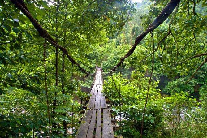 Mtirala National Park Hiking Tour from Batumi Kobuleti