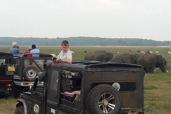 Yala National Park Jeep Safari