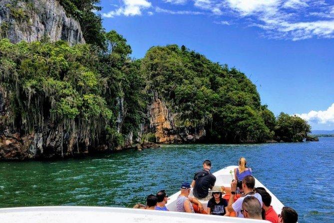 Los Haitises National Park Tour from Las Terrenas or Samana (Half Day Trip)