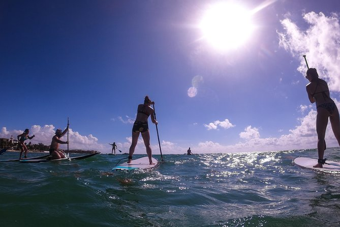 Private Paddleboard Experience On The Caribbean Sea photo 7