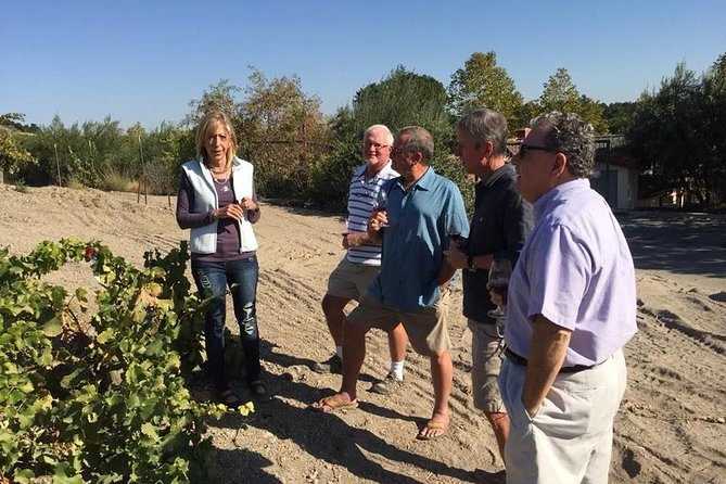 Deliciously Fun Educational Wine Tours in Paso Robles from Pismo Beach photo 2