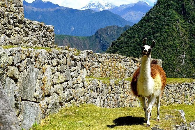 3-Day Inca Quarry Trek to Machu Picchu photo 3