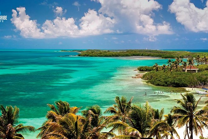 Two Fantastic Islands To Discover: Tour To Contoy & Isla Mujeres