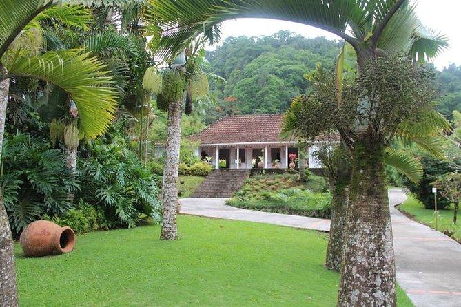 garden and creole house