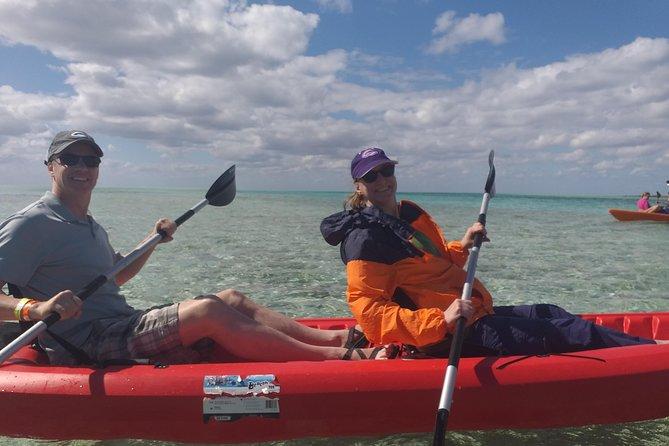 Freeport Shore Excursion: Kayak Turtle Park