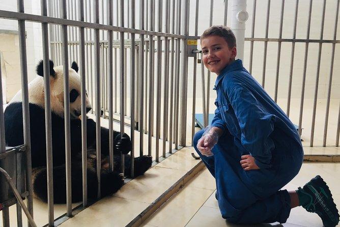 四川熊猫森林义工之旅拍