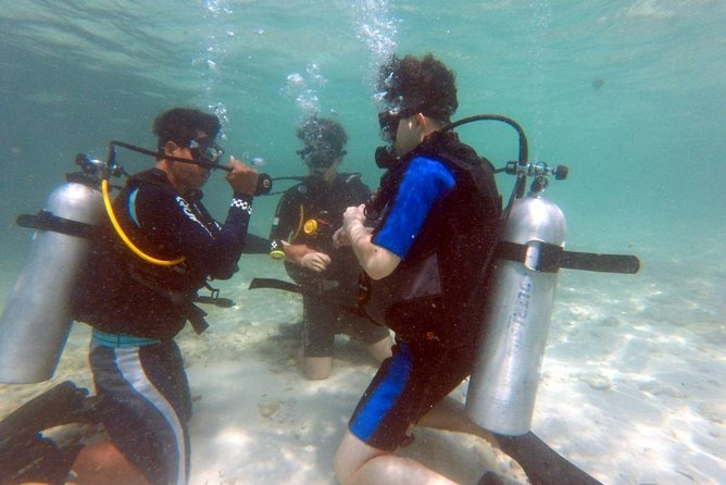 Scuba try dives two exciting try dives with our PADI instructor in Pattaya
