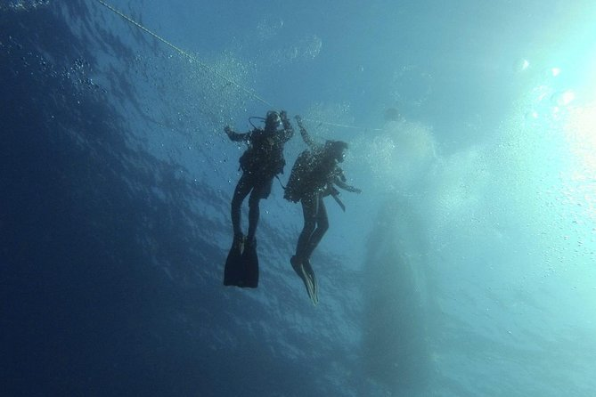 2 Dive Package for PADI Qualified Divers in Gran Canaria photo 7