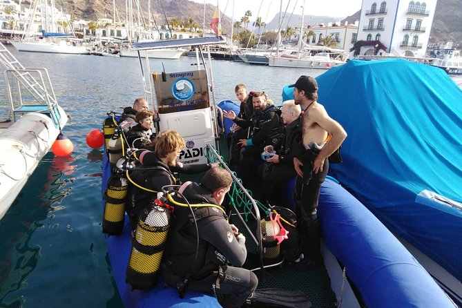 2 Dive Package for PADI Qualified Divers in Gran Canaria photo 8