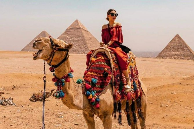 Private Half Day Tour to Giza pyramids by horse carriage