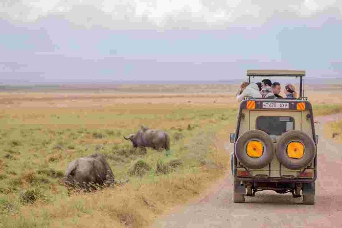 3 Day Serengeti and Ngorongoro Crater Tour photo 7