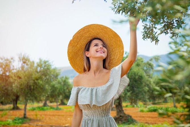 Olive Oil Farm Tour