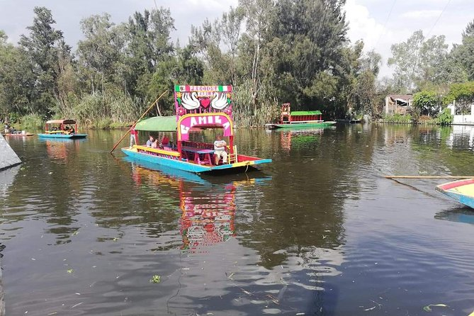 Tour to Xochimilco photo 1