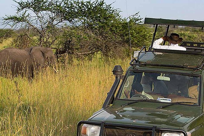 7 Days Tanzania Adventure Camping Safari