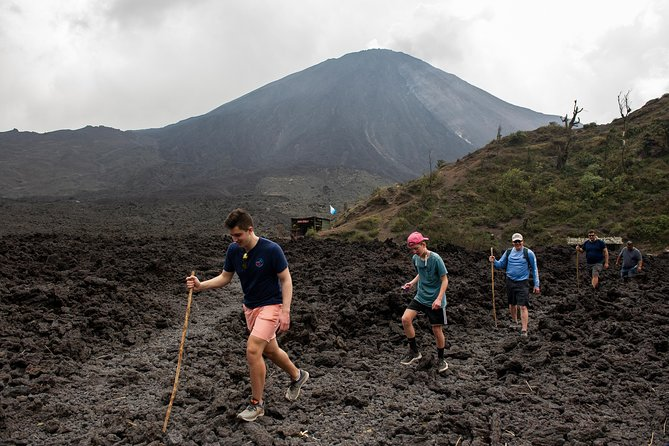 Pacaya Volcano Tour and Hot Springs from Antigua