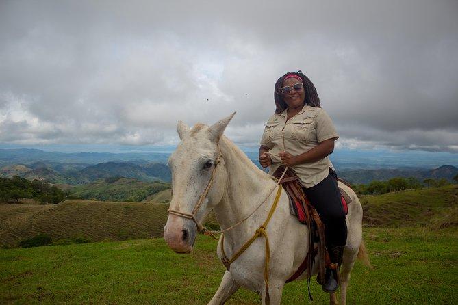Horseback Riding Tour Plus Coffee Tour 3 in 1 (Coffee Chocolate and sugar cane)