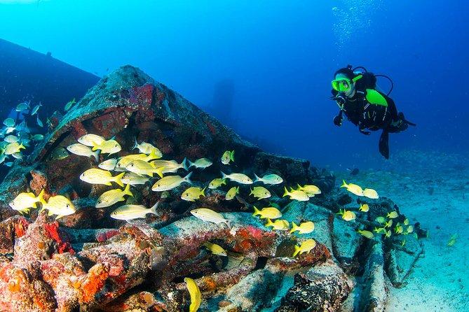 Aquaworld Wreck Dive