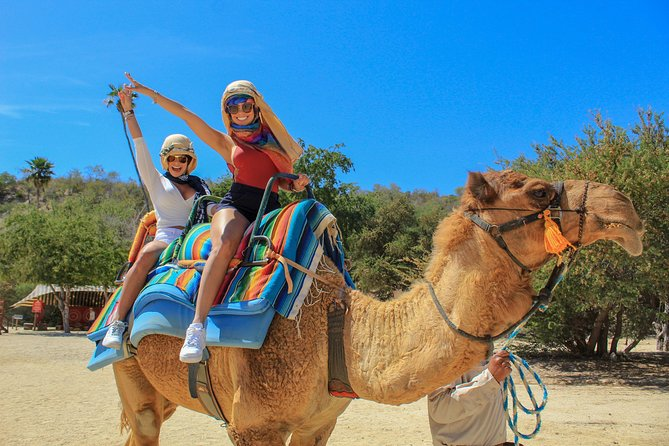 Camel Quest with Snacks & Waterslides