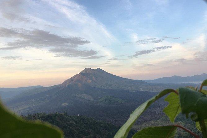Point View of Kintamani Vulcano and Ubud Tour
