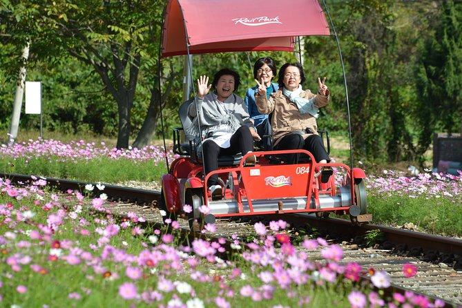 3 Day Essential Tour-Seoul City, Nami & Rail Bike, Everland(Inc. Meals, 2B, 1D)