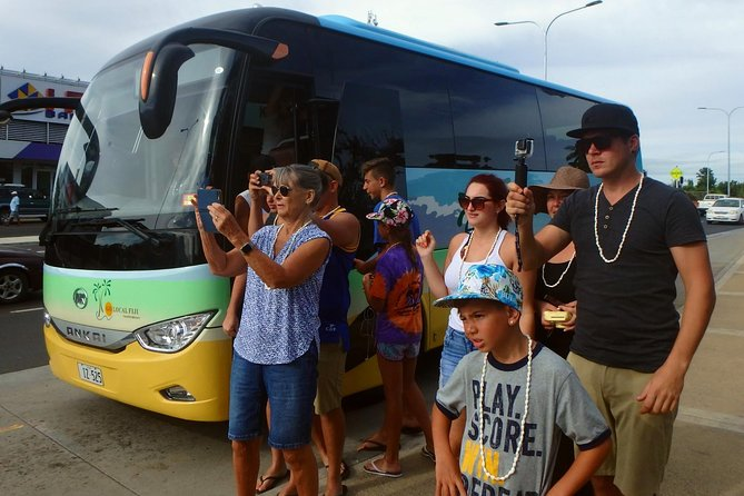 Private Transfer from Denarau Hotels/Double-Tree Fiji to Nadi Airport