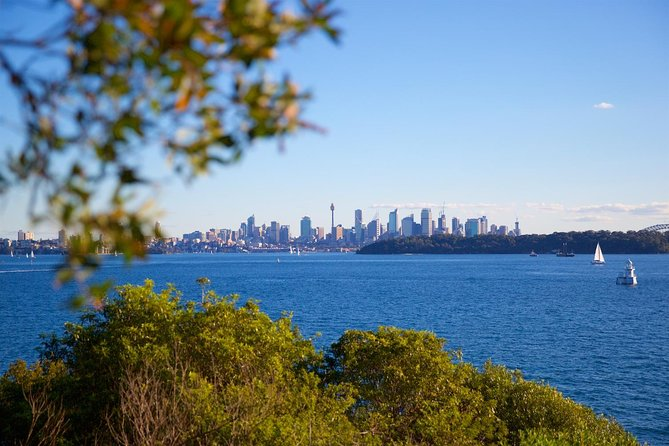 Private Sydney Foreshores and Beaches SUV Tour