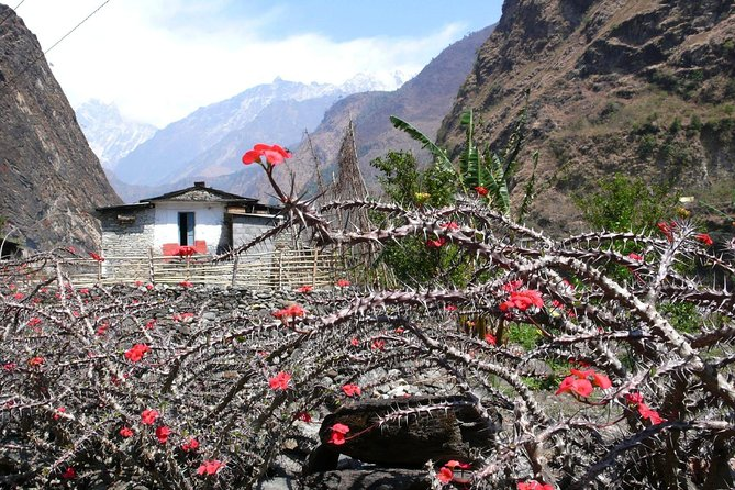 12 days Annapurna Panorama & Tatopani Trek