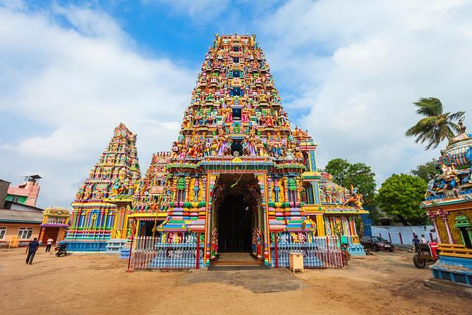 Sigiriya Day Tour & Trincomalee Drop With Holiday Walkers Sri Lanka