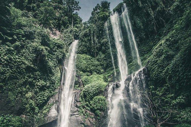 Sekumpul Waterfall Bali Tour