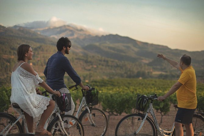 Wine tourism with bike