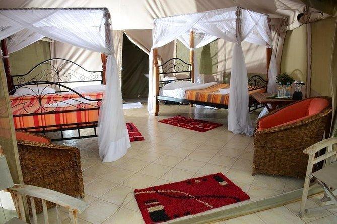 3 Days Masai Mara by Flight from Mombasa / Diani / Malindi (Elangata Olerai)