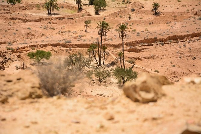 The three desert and mountain oases