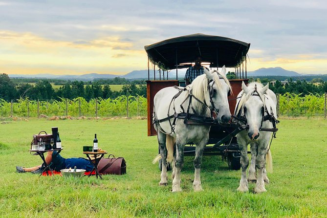 30 Minute Horse Drawn Carriage Wine Tasting Trail