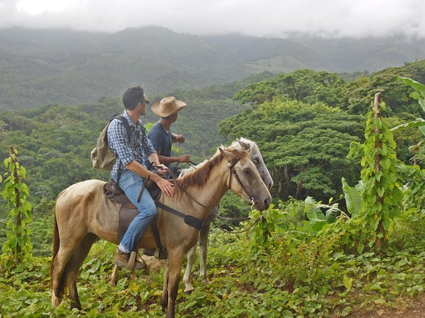 Horseback riding in the mountains of Paraiso