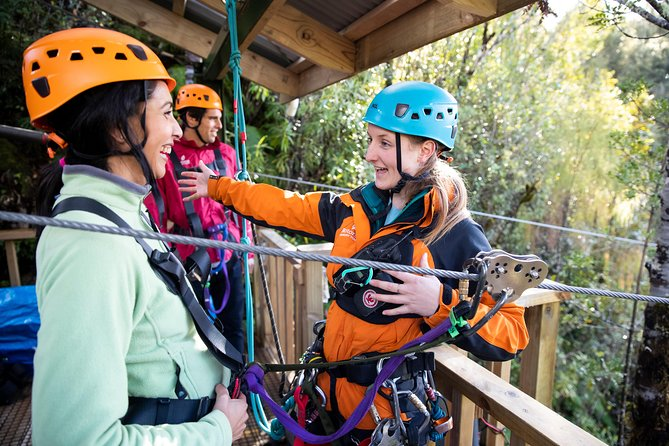 Ziplining Forest Experience - The Ultimate Canopy Tour Rotorua