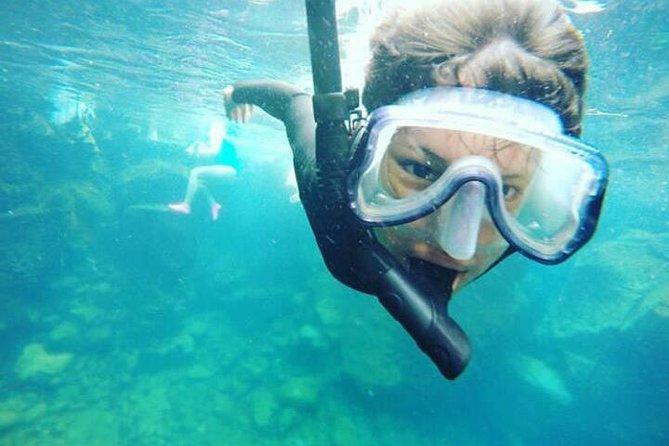Tour to Tuneles & Cabo Rosa (Isabela Island)