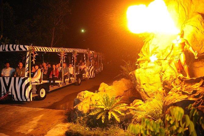Singapore Night Safari Tram Ride (Shared Transfer)