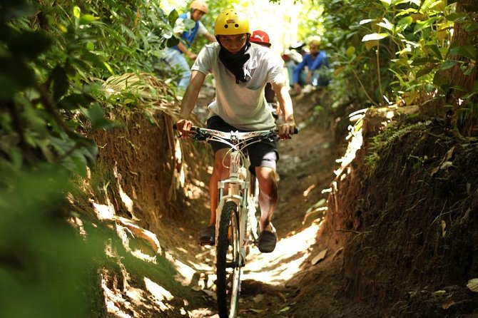 Lombok Cycling through Coffee, Cacao and Mangosteen Plantation