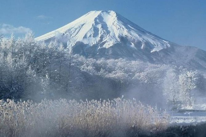 2 Day Mt Fuji and Kyoto Rail Tour from Tokyo photo 2