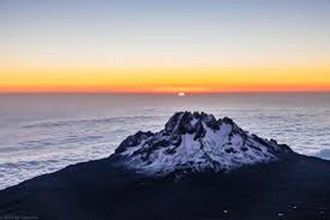Mount Kilimanjaro Full-Day Hike Tanzania Safari